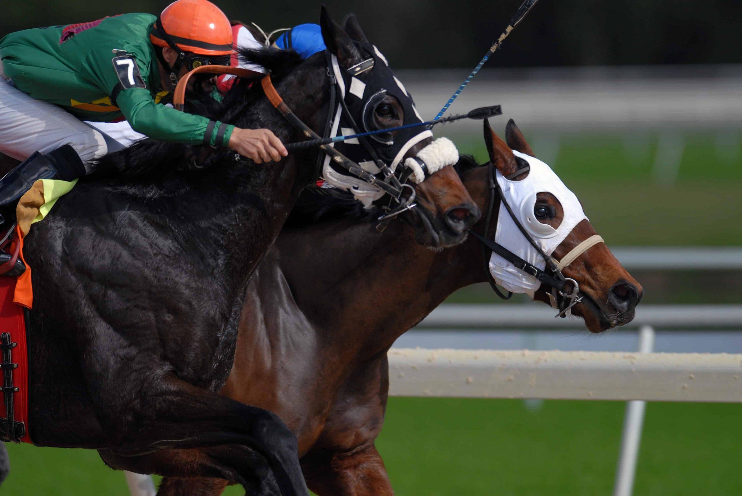 Pferderennen als Glücksspiel – Lohnt sich das überhaupt?