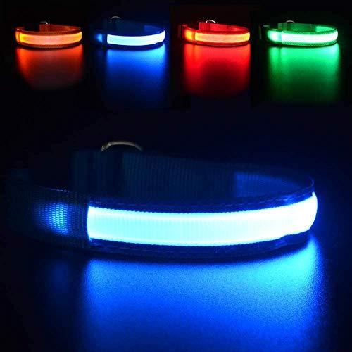 MASBRILL Hundehalsband Leuchtend USB Aufladbar Wasserdichtes LED Leuchthalsband für Kleine Mittlere Große Hunde Einstellbar Sicherheit Hundehalsband mit 3 Beleuchtungsmodi - Blau - M